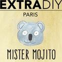 Concentré Mister Mojito - ExtraDiy