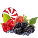 Fruits des Bois - FW