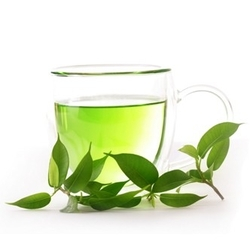 Green Tea - TPA
